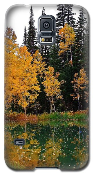 Galaxy S5 Case featuring the photograph Autumn Reflections by Bruce Bley