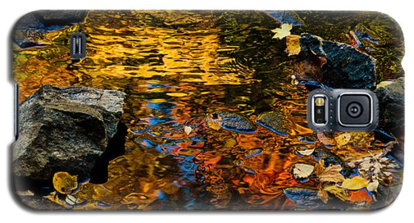 Autumn Reflections Galaxy S5 Case by Cheryl Baxter
