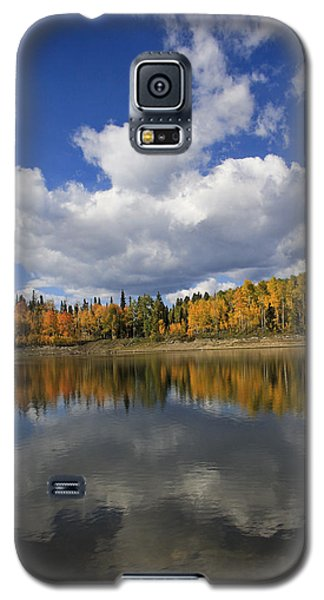 Autumn Reflections Portrait Galaxy S5 Case