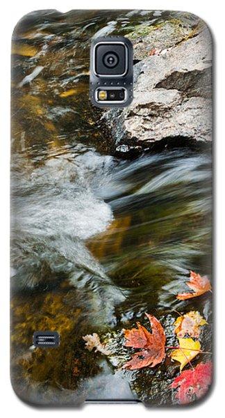 Autumn Stream Galaxy S5 Case by Cheryl Baxter