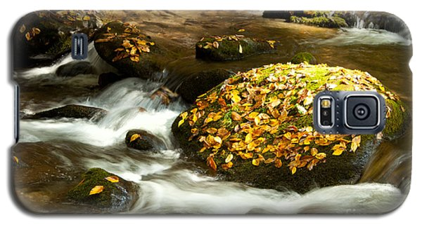 Autumn Stream Galaxy S5 Case by Lena Auxier