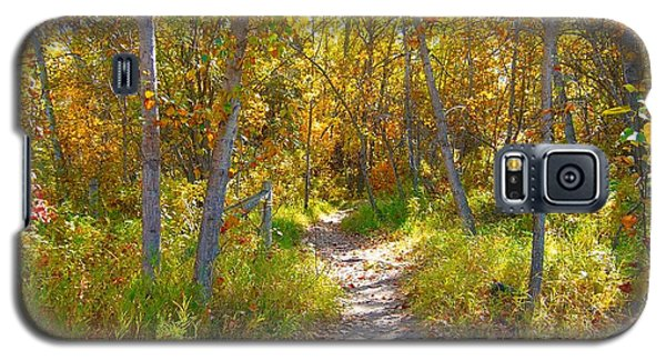Autumn Trail Galaxy S5 Case by Jim Sauchyn