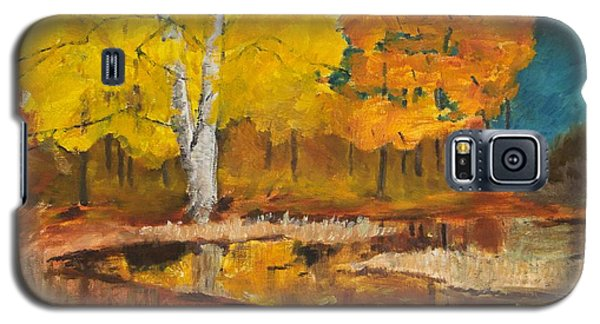 Autumn Tranquility Galaxy S5 Case