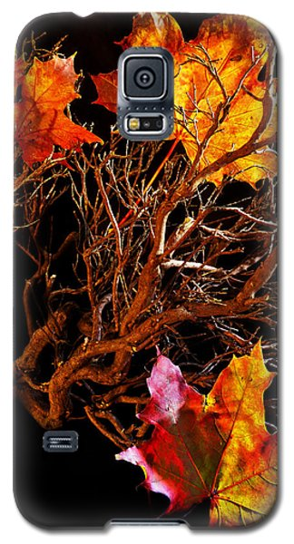 Galaxy S5 Case featuring the photograph Autumnal Feelings by Beverly Cash