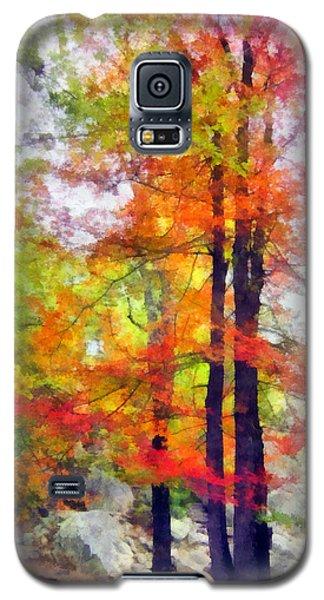 Autumnal Rainbow Galaxy S5 Case