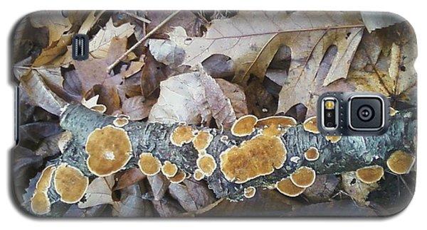 Autumns Art 2 Galaxy S5 Case by Gerald Strine