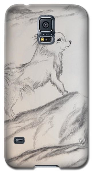 Galaxy S5 Case featuring the drawing Aye Chihuahua by Maria Urso