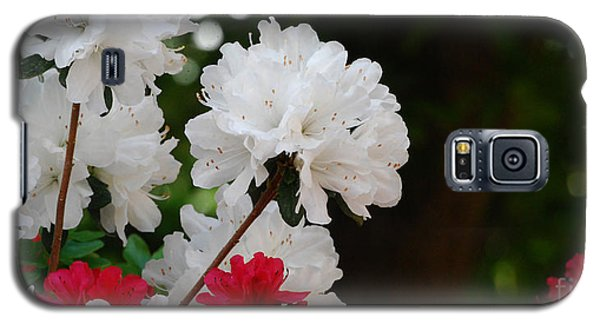 Galaxy S5 Case featuring the photograph Azaleas by Linda Mesibov