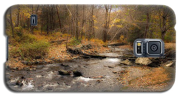 Babbling Brook In Autumn Galaxy S5 Case