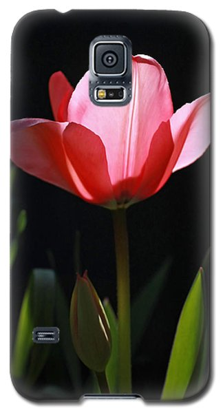 Back Lite Tulip Galaxy S5 Case