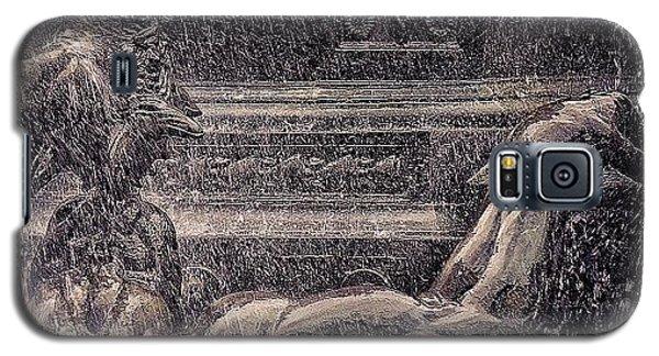 School Galaxy S5 Case - Bailey Fountain - Ny by Joel Lopez