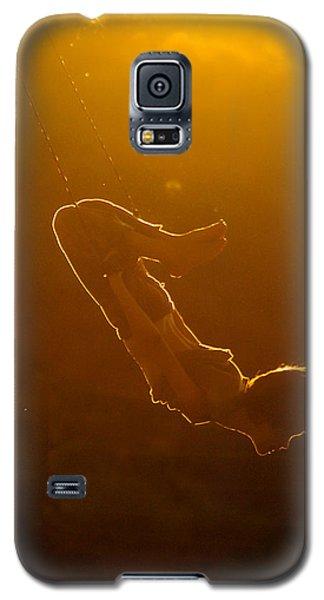 Balance The Light Galaxy S5 Case