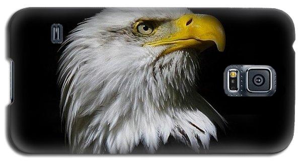 Bald Eagle Galaxy S5 Case by Steve McKinzie