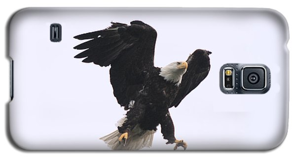 Galaxy S5 Case featuring the photograph Bald Eagle Tallons Open by Kym Backland