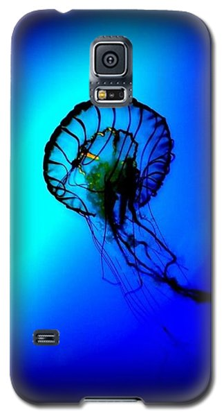 Galaxy S5 Case featuring the photograph Baltimore Belle  by Danielle  Parent