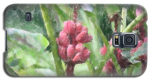 Galaxy S5 Case featuring the photograph Banana Plant by Donna  Smith