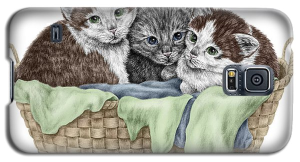 Basket Of Kittens - Cats Art Print Color Tinted Galaxy S5 Case