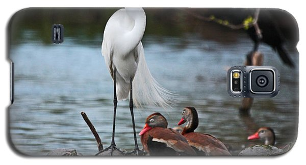 Galaxy S5 Case featuring the photograph Bayou Friends by Luana K Perez