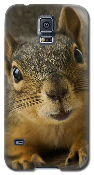 Be Friends Galaxy S5 Case