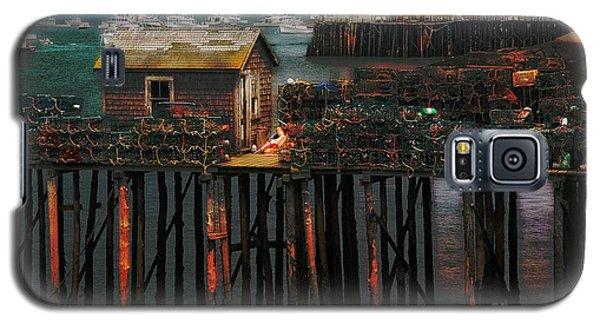 Beals Island Galaxy S5 Case by Alana Ranney