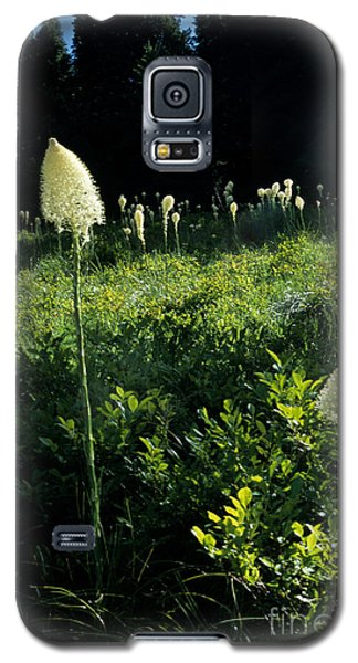 Galaxy S5 Case featuring the photograph Bear-grass II by Sharon Elliott