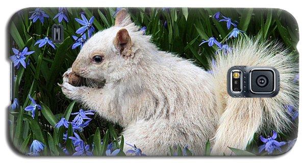 Beautiful Blue Eyes Galaxy S5 Case by Doris Potter