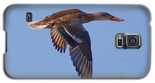 Beautiful Duck Flying Galaxy S5 Case