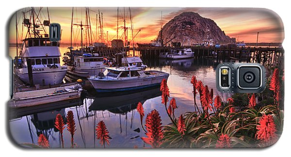 Beautiful Morro Bay Galaxy S5 Case
