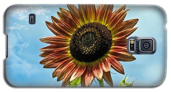 Galaxy S5 Case featuring the photograph Beautiful Sunflower by Susan Leggett
