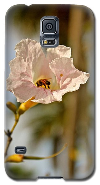 Bee In Paradise Galaxy S5 Case
