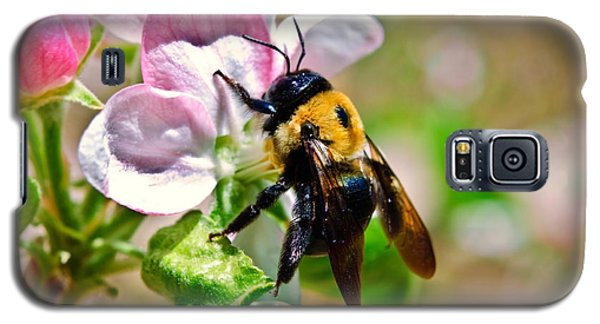 Galaxy S5 Case featuring the photograph Bee On An Apple Blossom by Susan Leggett