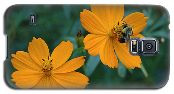 Galaxy S5 Case featuring the photograph Bee On Cosmos Flower  by Tom Wurl