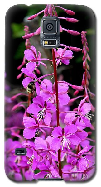 Galaxy S5 Case featuring the photograph Bee On Fireweed In Alaska by Kathy  White