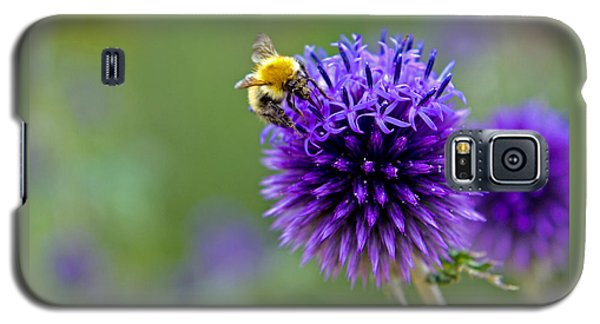 Bee On Garden Flower Galaxy S5 Case