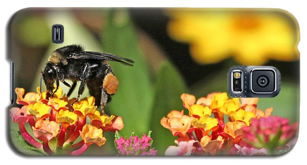 Galaxy S5 Case featuring the photograph Bee On Lantana Flower by Luana K Perez