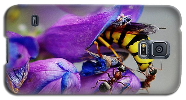 Bee Parking Lot Galaxy S5 Case