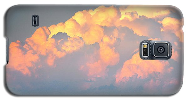 Beefy Thunder Galaxy S5 Case by Brian Duram