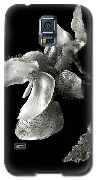 Begonia In Black And White Galaxy S5 Case