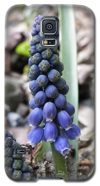 Bell Flowers Galaxy S5 Case