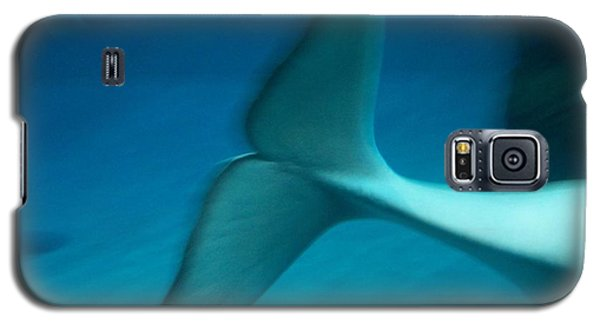 Galaxy S5 Case featuring the photograph Beluga Tail by Peter Mooyman