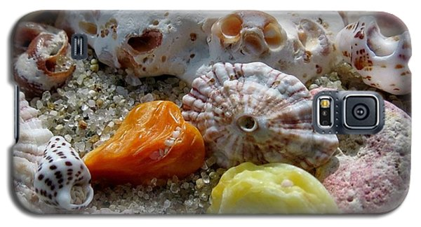 Bermuda Beach Shells Galaxy S5 Case