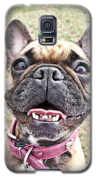 Best Friend Galaxy S5 Case by Jeannette Hunt