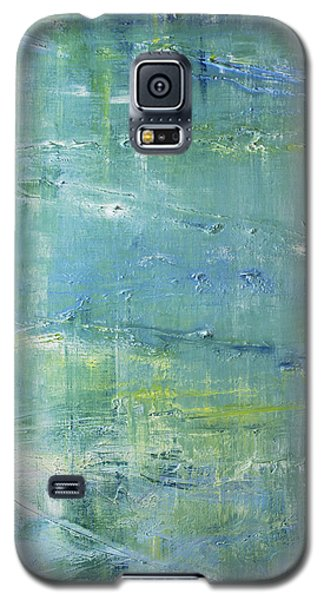 Beyond The Pond Galaxy S5 Case by Dolores  Deal
