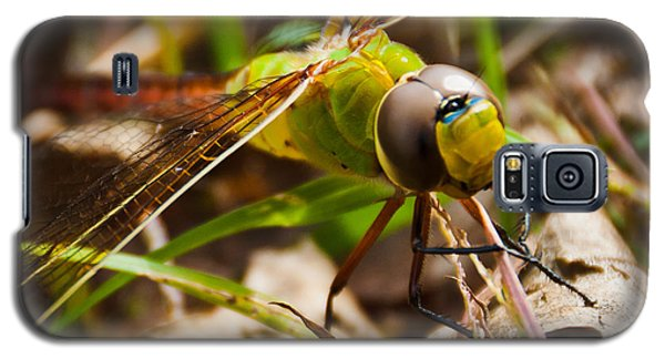 Big Brown Eyes Galaxy S5 Case by Cheryl Baxter