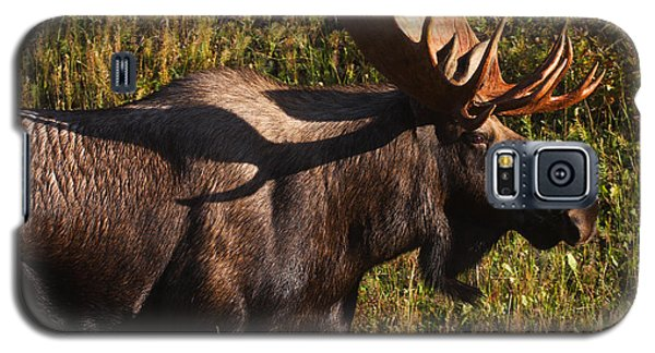 Galaxy S5 Case featuring the photograph Big Bull by Doug Lloyd