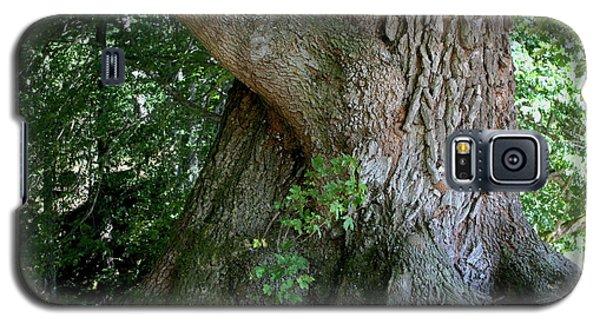 Big Fat Tree Trunk Galaxy S5 Case
