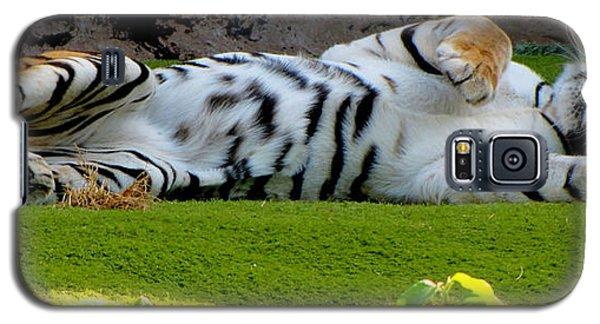 Big Pussycat Galaxy S5 Case by Barbara Walsh