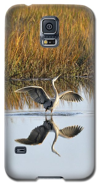 Galaxy S5 Case featuring the photograph Bird Dance by Kay Lovingood