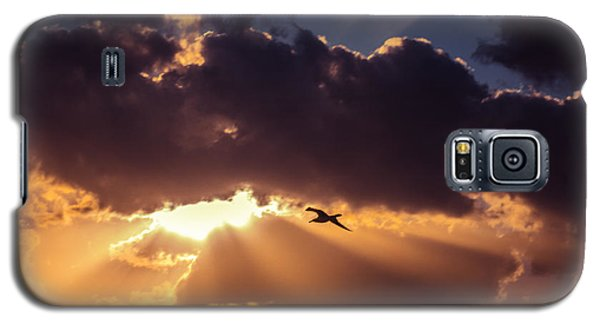 Bird In Sunrise Rays Galaxy S5 Case