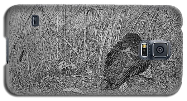 Bird In Winter Galaxy S5 Case
